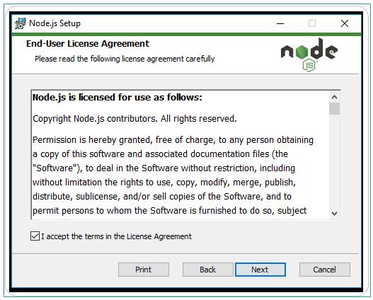Node JS setup